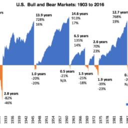6 důvodů proč nemít strach z medvědího trhu